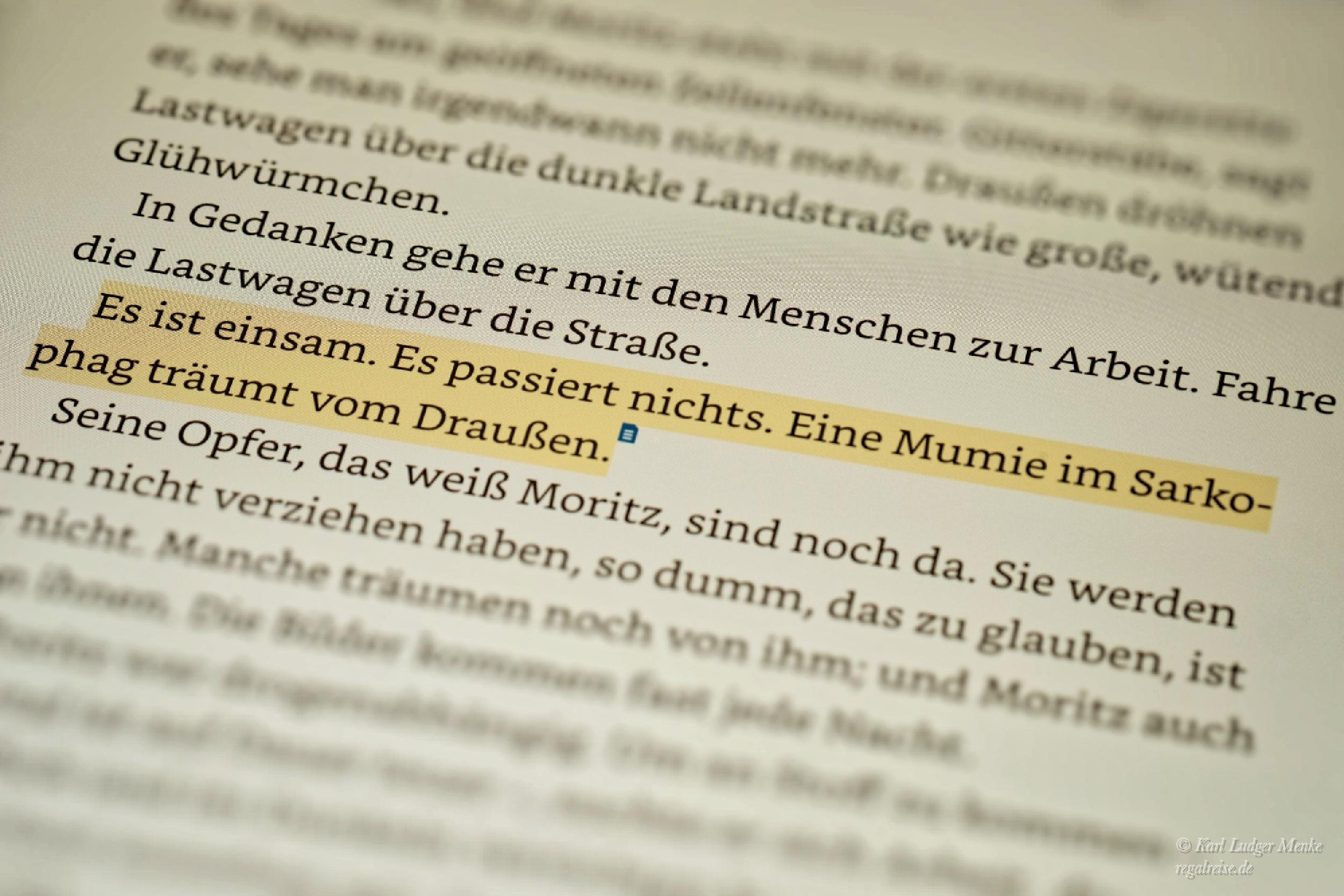 Lektürenotizen zu Alexander Krützfeldt: Acht Häflinge.