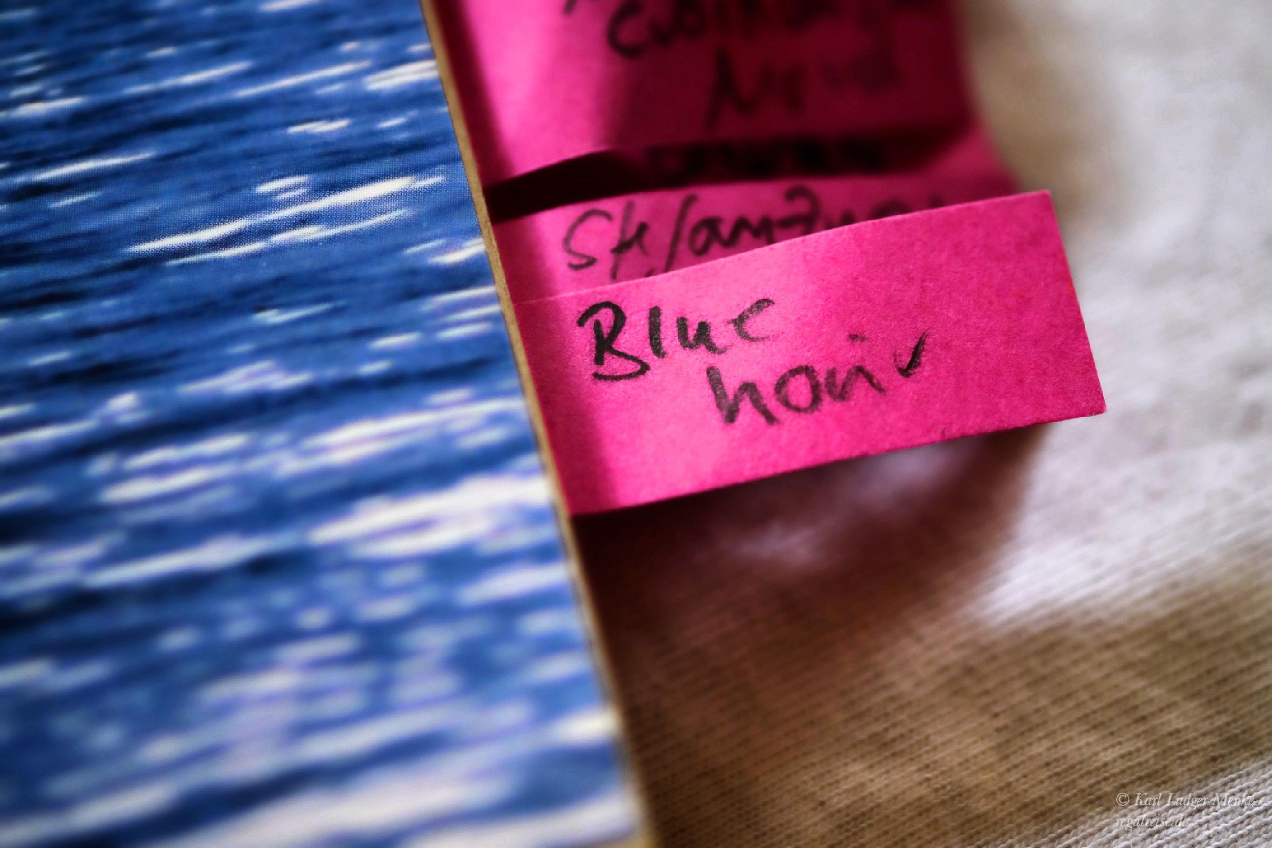 Lektürenotizen zu John Rechys »After the Blue Hour«