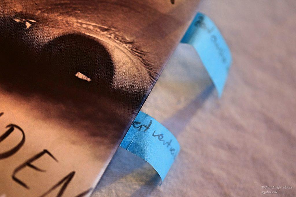 Lektürenotizen zu David Fuchs »Bevor wir verschwinden«