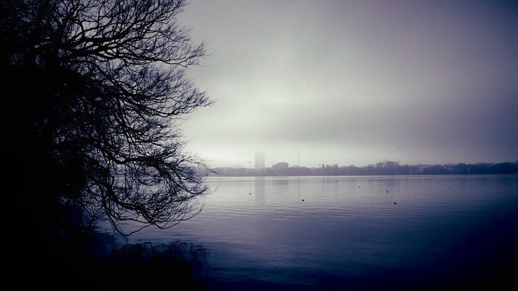 Nebel in Hamburg